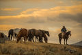 cowboy, western, Peter Lik, cowgirl, ranch, museum, fine art, print, jess lee, artist, photographer, limited edition, high quality, high resolution, beautiful, artistic,  stoecklein, klassy,