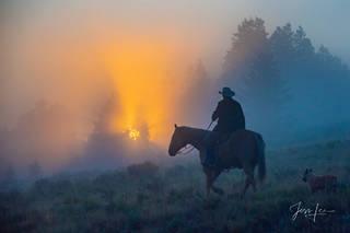Sun Rise Cowboy
