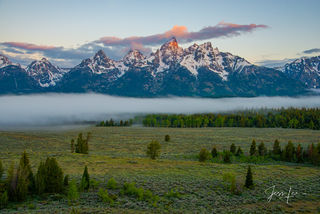 tetons, range, mountains, wildlife, snow, trees, cowboy, western, Large format, cowgirl, ranch, museum, fine art, print, jess lee, artist, photographer, limited edition, high quality, h