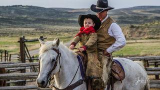 Bring them up cowboy