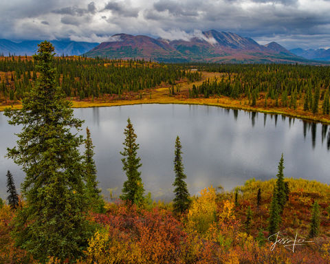Alaskan range during the transition from summer to fall.