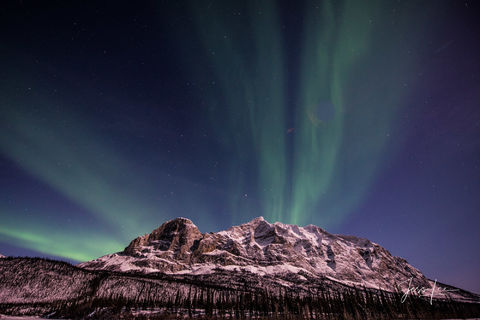Mountain range in Alaska with the aurora borealis putting on a show behind it.