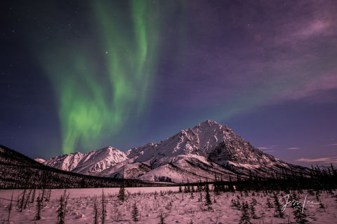 Aurora dancing over the frozen Arctic tundra