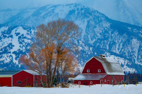 Red Barn in Jackson Hole