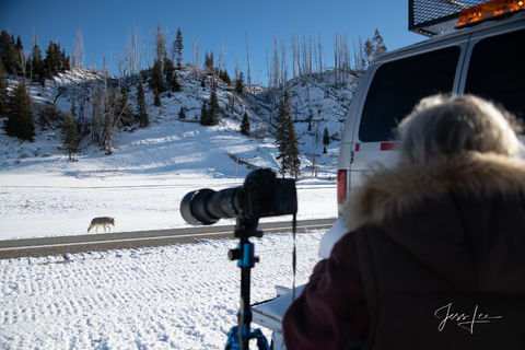 Photographing Yellowstone with jessleephotos.com