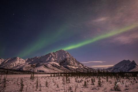 Aurora borealis streaking across the sky over the Alaskan tundra