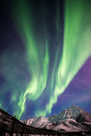Aurora Borealis dancing over an Alaskan mountain range
