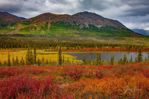 Autumn makes its way up the mountains towering above Alaska's tundra.