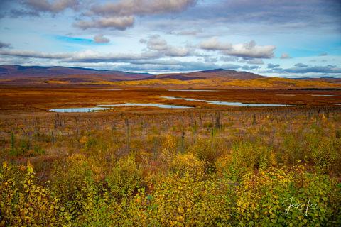 Autumn in Alaska's arctic