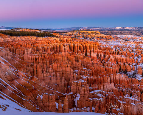 Morning light casting a beautiful glow over Bryce Canyon's unique rock formations.