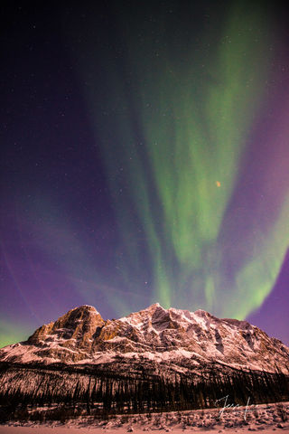 Aurora Borealis in Alaska under a sky full of stars.