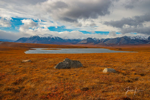 Arctic tundra dressed in red, white, and blue colors