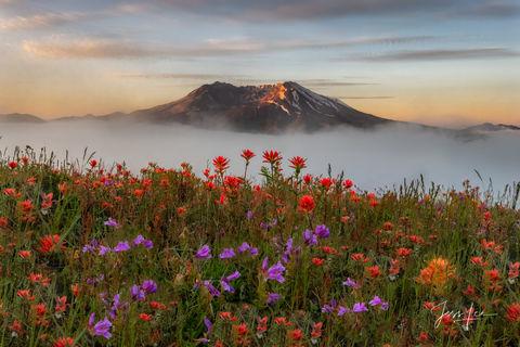 Mountain Photography  |  Fine Art Prints