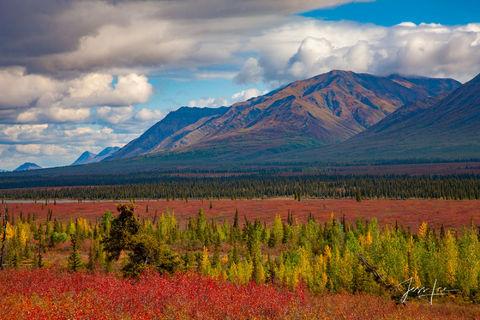 Talkeetna Hills in Alaska turning autumn colors.