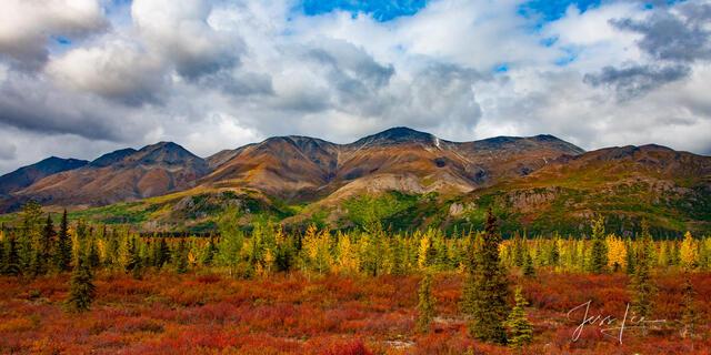 Alaska Range Fall Color
