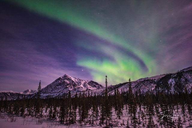 Aurora Borealis making waves over the Alaskan landscape.