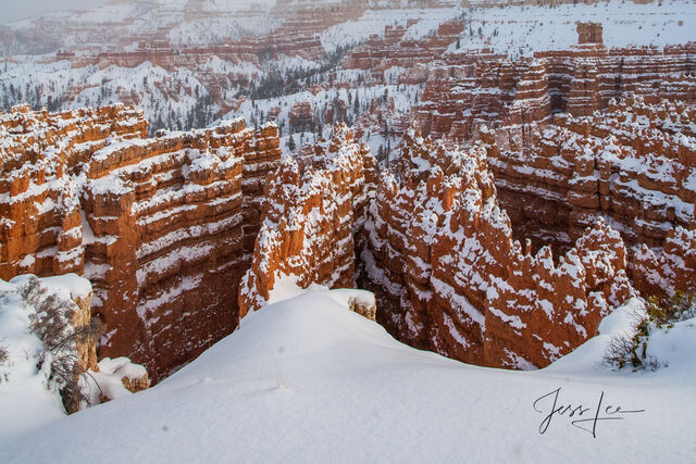 Bryce Canyon Ridges