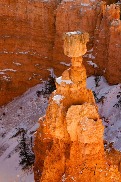 Thors Hammer in Bryce Canyon during winter