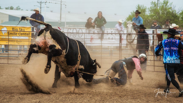 So you want to be a Bull rider?