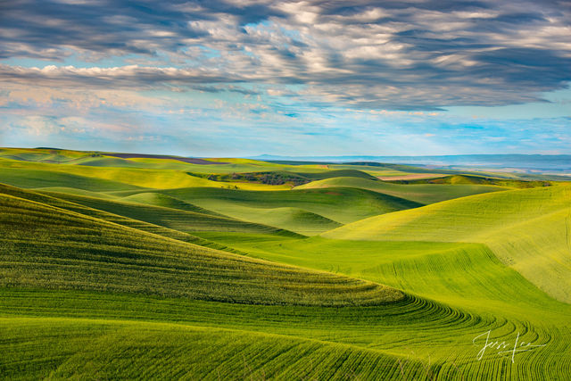 photo of Palouse Fields in Washington, landscape photography, Pacific Northwest, PNW, mountain photography, large format, quality, museum, fine art, print, jess lee, artist, photographer, limited edit