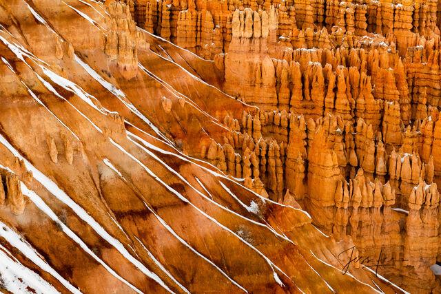Red Zebra Bryce Canyon