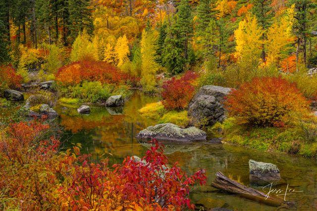 Color Pond