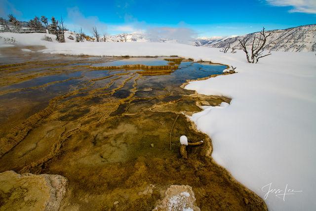 Mammoth Hot Springs Winter