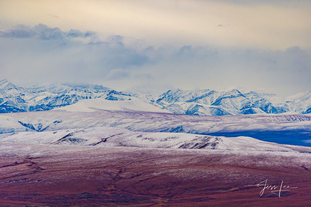 Arctic tundra changing seasons from summer to fall