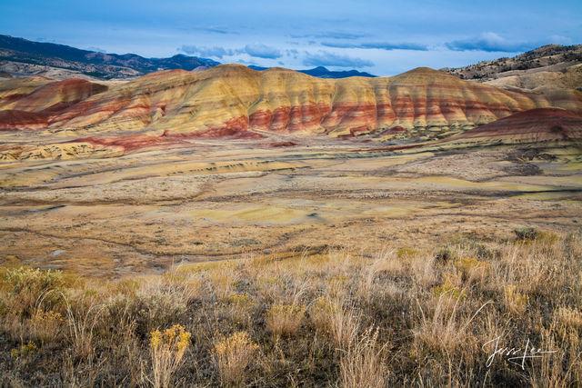 Oregon Desert Pinstripe