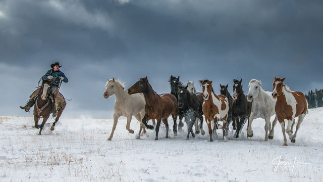 Turning the Herd | cowboy herding horses in snow