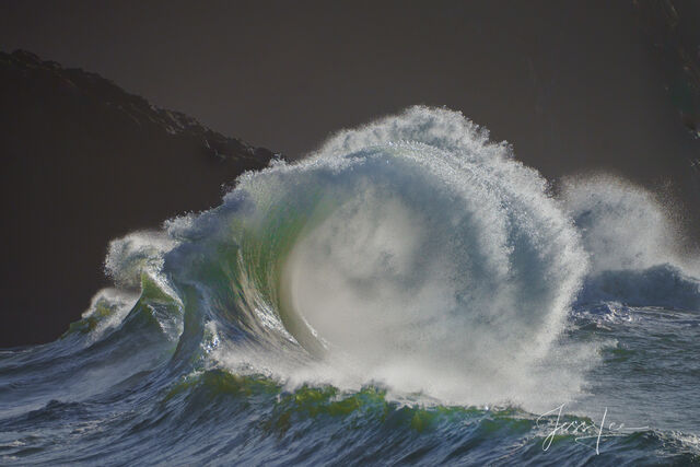 Twisted Wave | Wild Surf