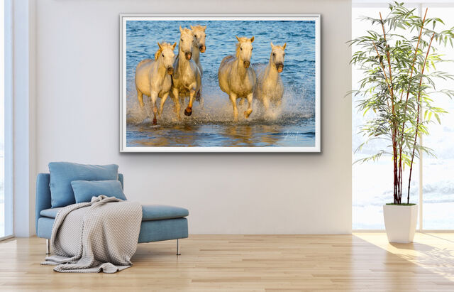 Fabulous photography, best photo print,  picture of,