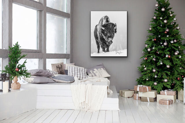 World Best Fine Art Photography, , Fabulous photography, best photo print, picture of