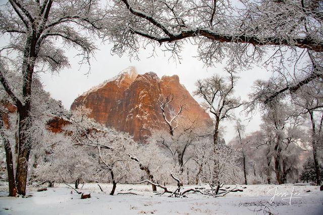 Zion Snow Park