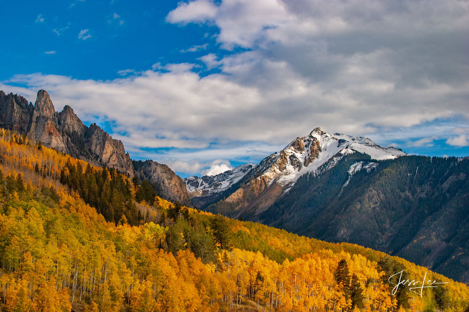 Colorado Fall Color | Fine Art Print
