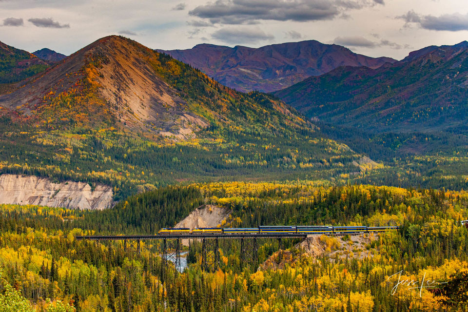 Train cars cross over the river flowing through a beautiful forest in Alaska.