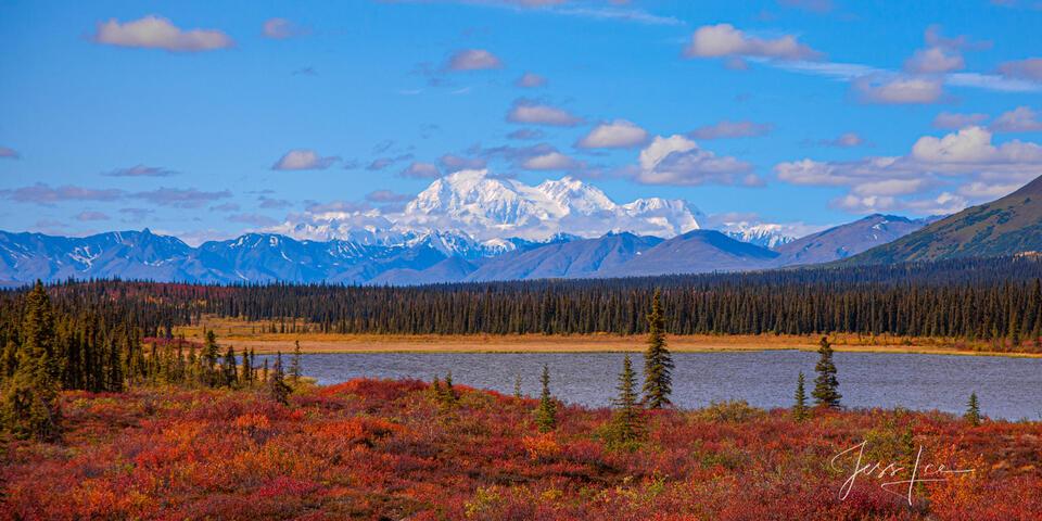 Alaska Range fall tundra and Denali mountain.
