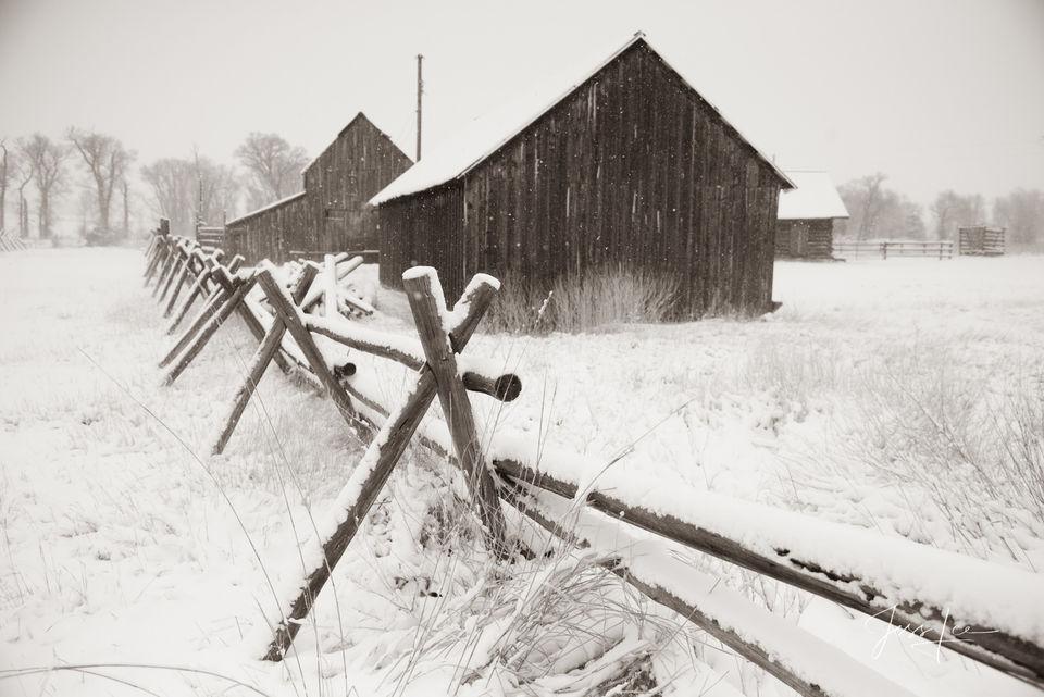 Paradise Winter Ranch