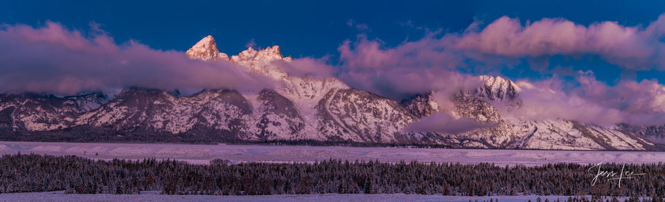 photo of winter in Grand Tetons, Wyoming photography, Jackson Hole, National Park, panorama, landscape photos, trees, evergreens, wildlife, snow, trees, western, museum, fine art, print, jess lee, sun