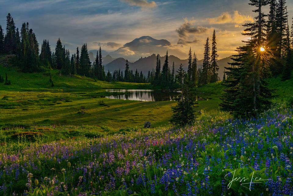 photo of Tipsoo Lake in Washington, National Park, alpine lake photo, sunset photography, lake print, sundown, Washington, National Park, PNW, Pacific Northwest, landscape