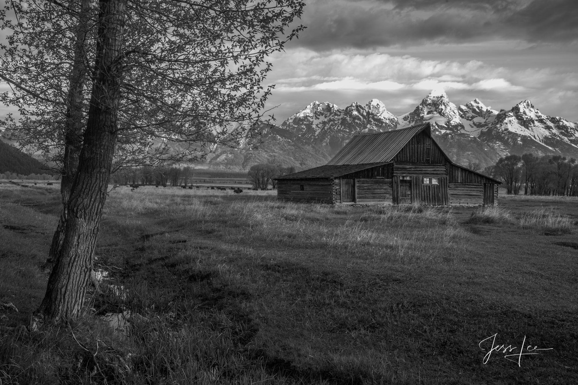 photo, photography, grand teton, mountains, Wyoming, barn, black and white,  western, fine art, print, jess lee, artist, photographer, limited edition, high quality, , photo