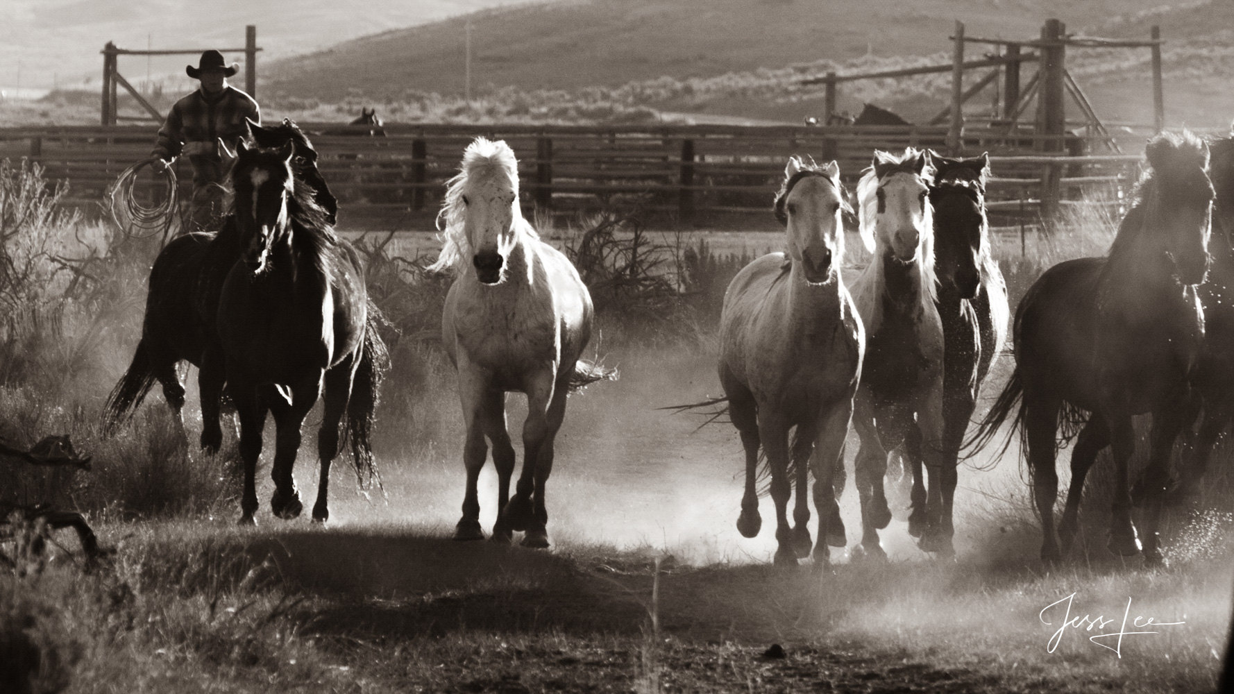 Fine Art Limited Edition Photography of Cowboys, Horses and life in the West. Colorado cowboy and horse herd running on their...