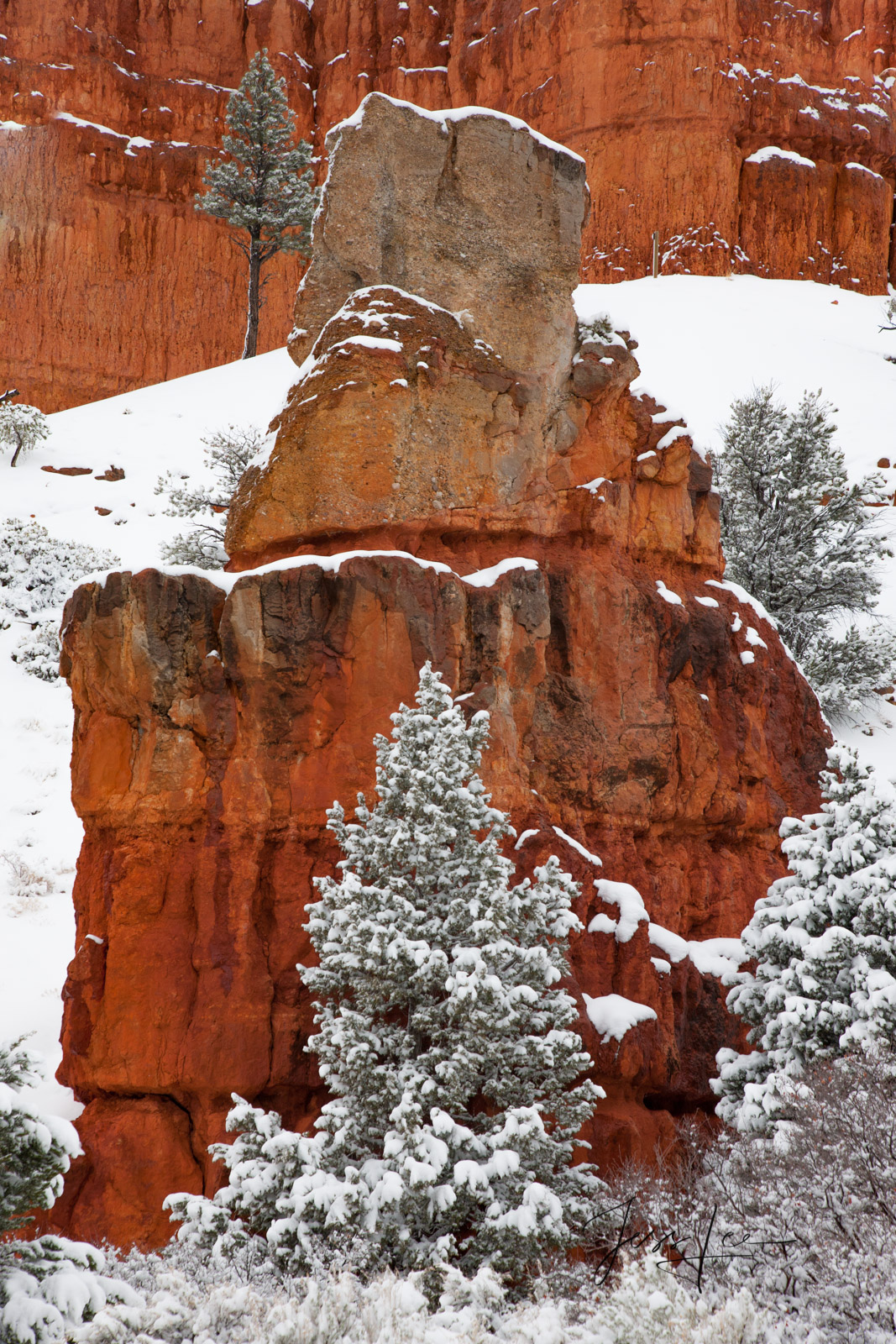 The red rocks of Bryce Canyon give a beautiful contrast to the fresh, white snow.
