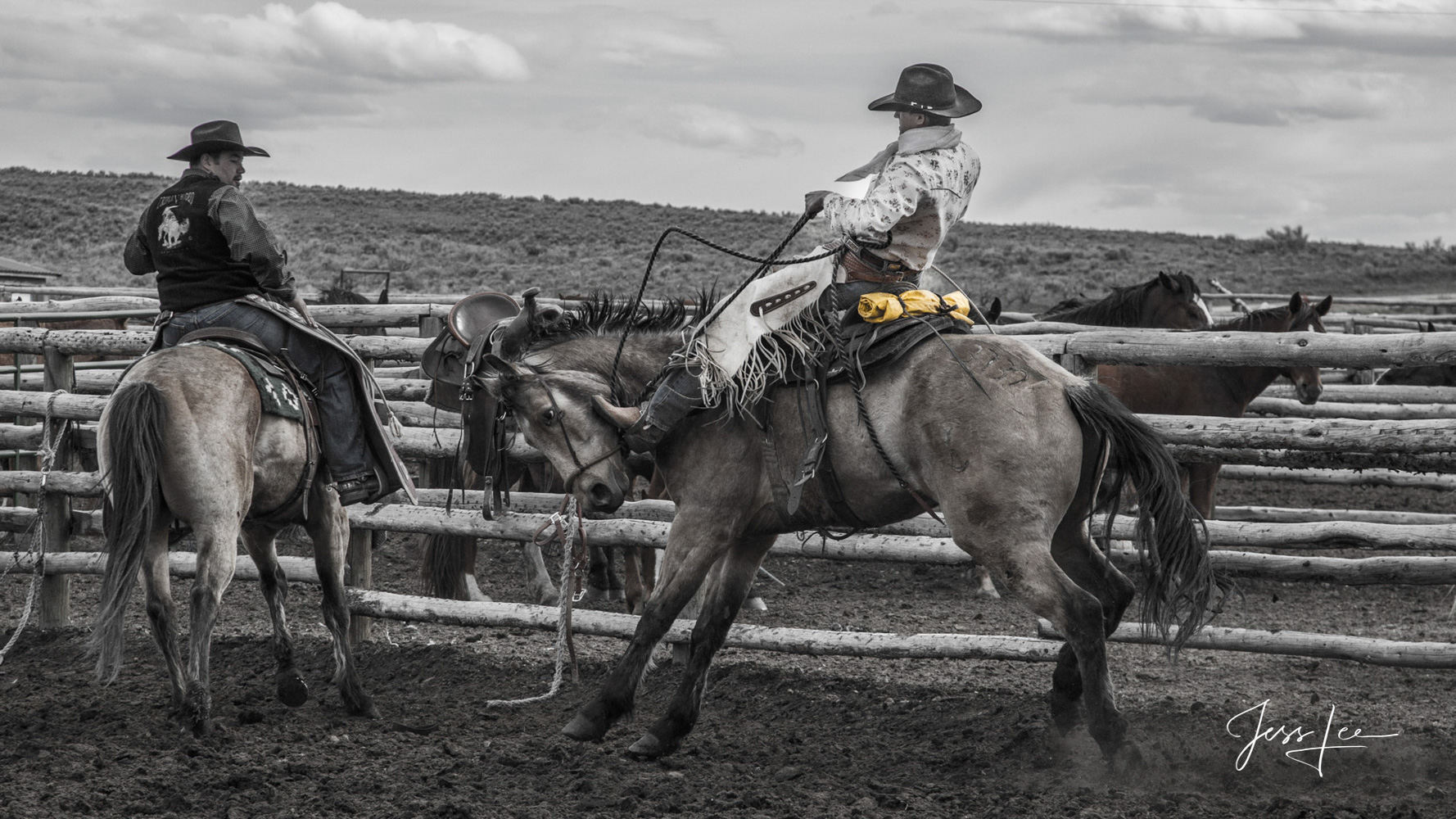 Fine Art Limited Edition Photography of Cowboys, Horses and life in the West. photo of Colorado cowboy bucking out a horse fresh...