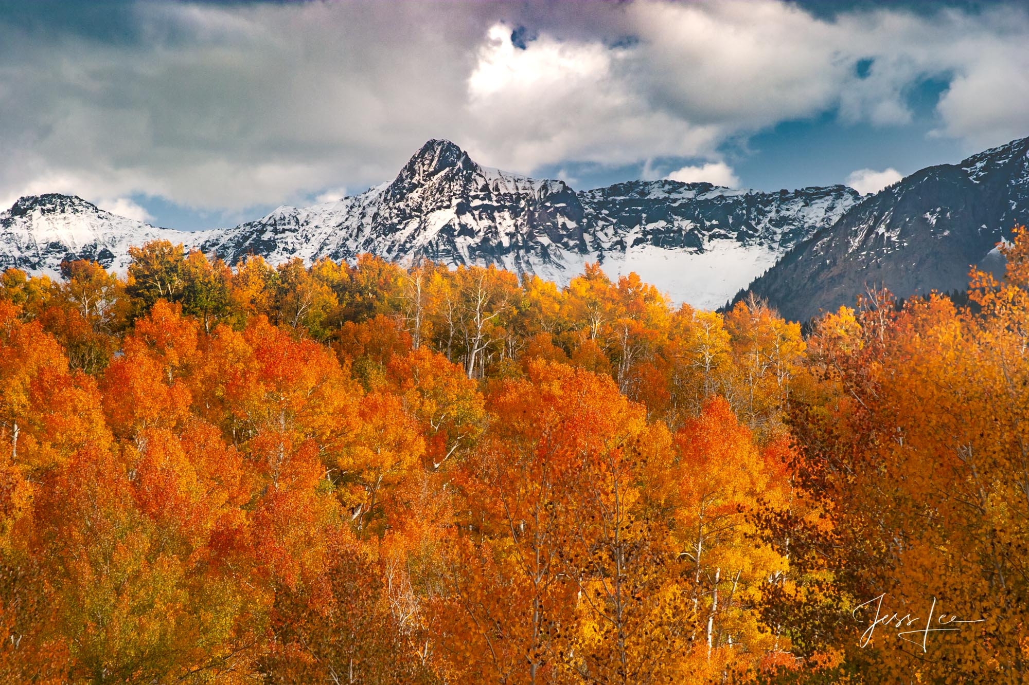 A Colorado Fall Color Print of snow capped mountains at the peak of Autumn Color in southeast Colorado. A limited Edition Fine...