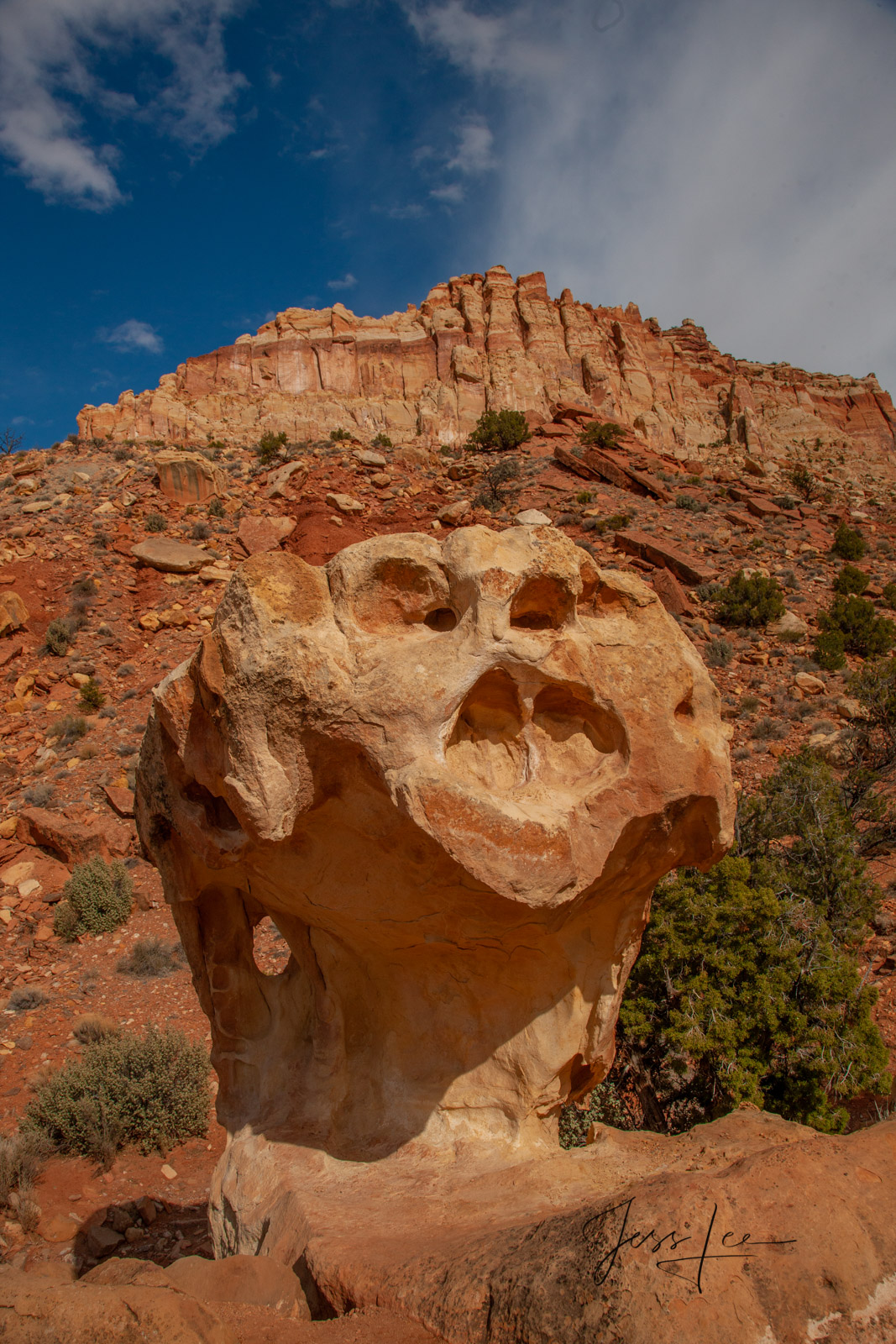 Limited Edition of 50 Fine Art Prints Capitol Screamer : Capitol Reef, San Rafael Swell and the Waterpocket Fold are some of...