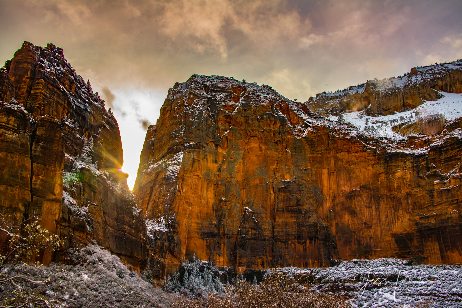 Red Wall Sunset, Zion Canyon