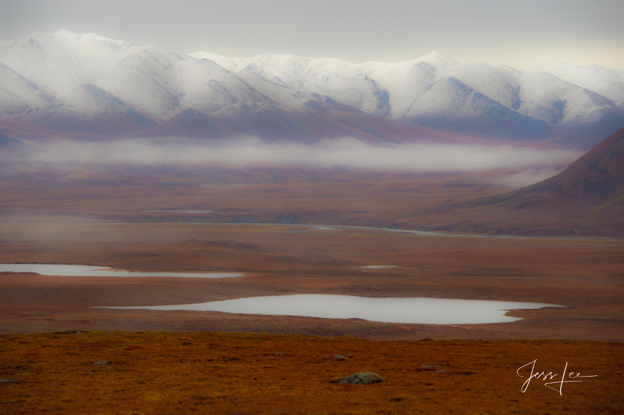 Fog covers the wetlands in Alaska's Arctic tundra.