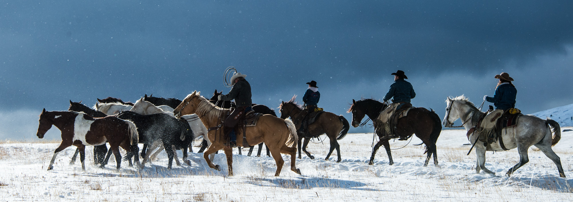 Winter Roundup 250 Limited Edition Fine Art Prints picturing Wyoming Cowboys and Cowgirls gathering their horses as a cold wind...