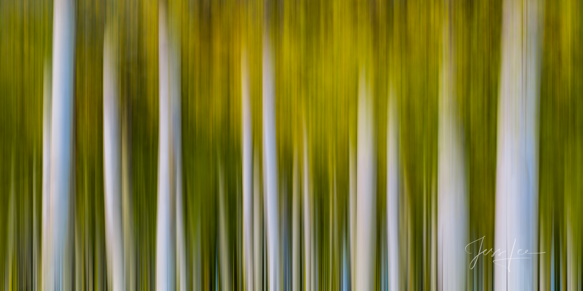 A Colorado Abstract Fall Color abstract Photography Print taken during the peak of Autumn Color in southeast Colorado. A limited...